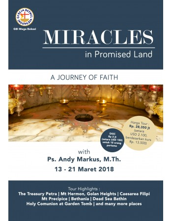 MIRACLES IN PROMISED LAND A JOURNEY OF FAITH