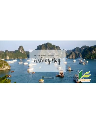 HANOI & HALONG BAY - 5D 4N